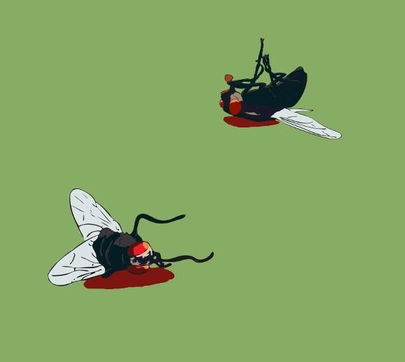 Twee vliegen in een klap